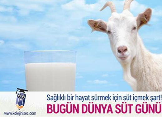 Dünya Süt Gününüz Kutlu Olsun