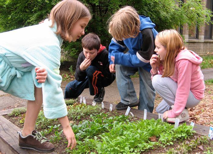Okul Bahçelerinin Öğrencilere Yararları Nelerdir?