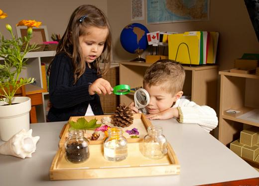 Özel Okullarda Montessori Eğitimi Dönemi